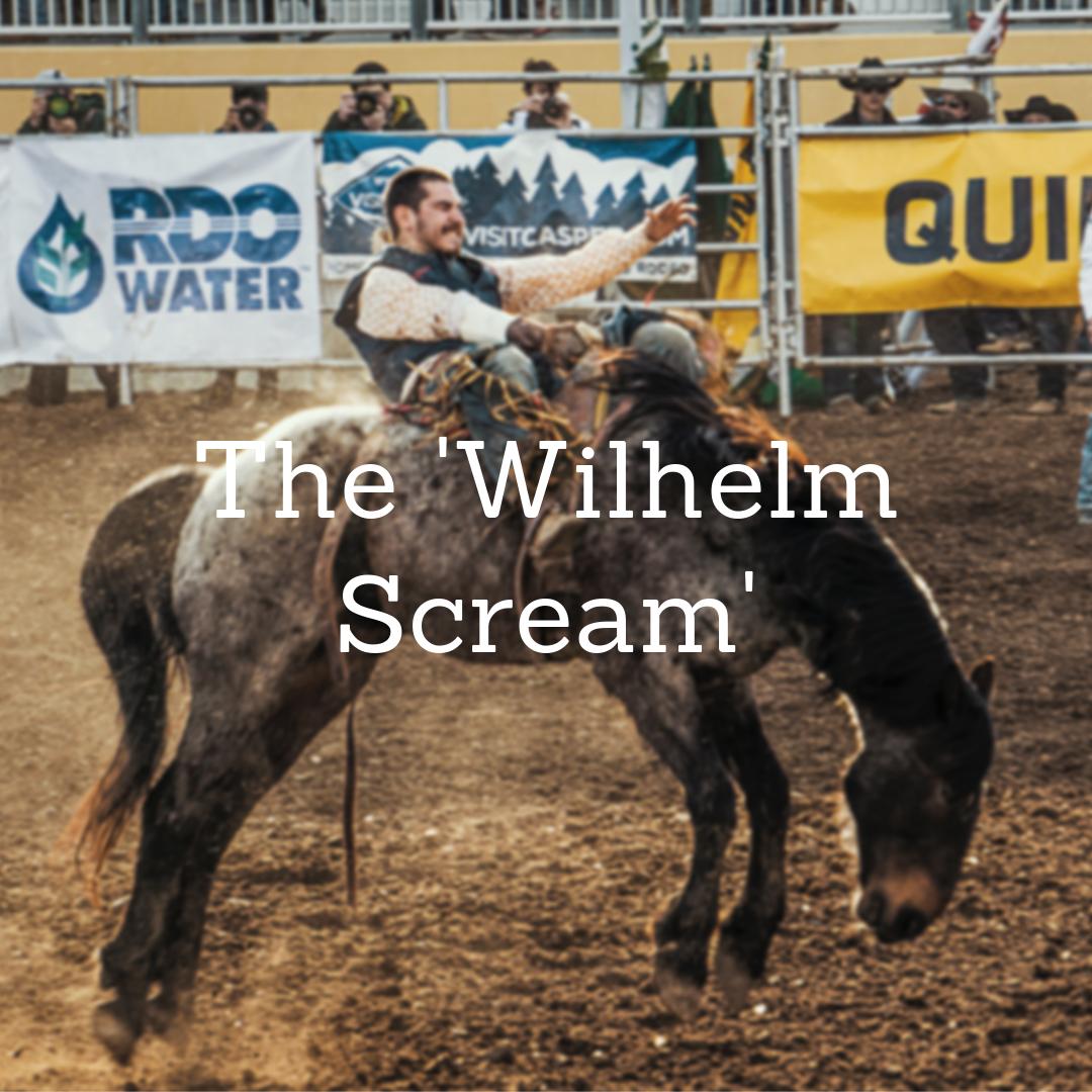 Soundproofing R Us Film SFX The Wilhelm Scream